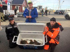 NJSK Fladfiskekonkurrence @ Rønnerhavnen | Frederikshavn | Danmark
